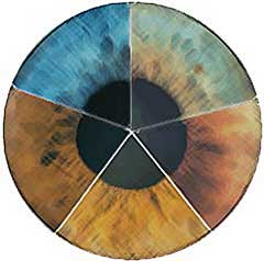 olho pentagonal