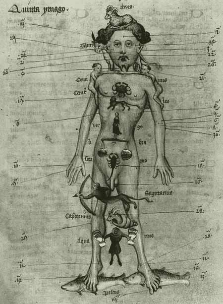 Homem zodiacal