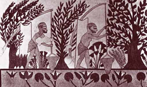 Canais de irrigação no Antigo Egito.
